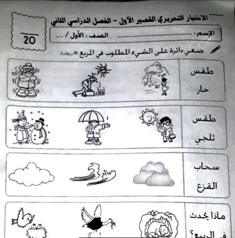 Photo of اختبار تحريري علوم صف اول  الفصل الثاني