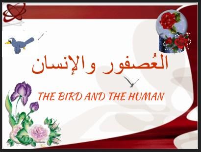درس العصفور والإنسان مع الإجابات اللغة العربية لغير الناطقين بها للصف الثالث