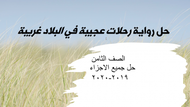 Photo of حل رواية رحلات عجيبة في البلاد الغريبة لغة عربية الصف الثامن