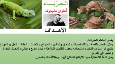 Photo of درس الحرباء لغة عربية صف ثاني عشر فصل أول