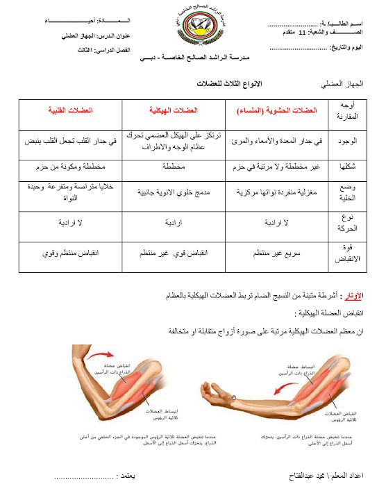 Photo of صف تاسع متقدم فصل ثاني أحياء  تلخيص الجهاز العضلي