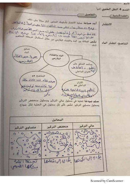 Photo of صف تاسع فصل ثاني احياء  دليل محلول الطالب التفاعلي