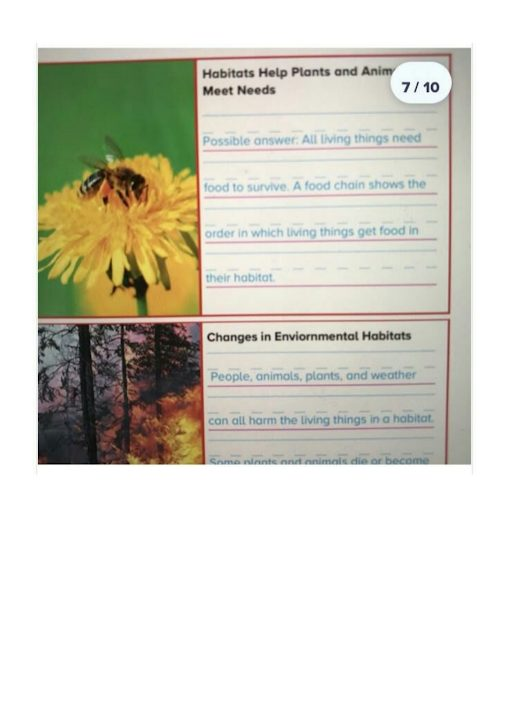 Photo of صف أول فصل ثاني حلول علوم الوحدة الأولى منهج إنجليزي