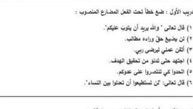 Photo of صف ثامن فصل ثاني أوراق عمل لغة عربية أدوات نصب الفعل المضارع