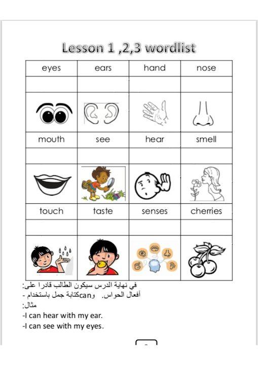 Photo of صف ثاني فصل ثاني كلمات الوخدة السادسة لغة إنجليزية