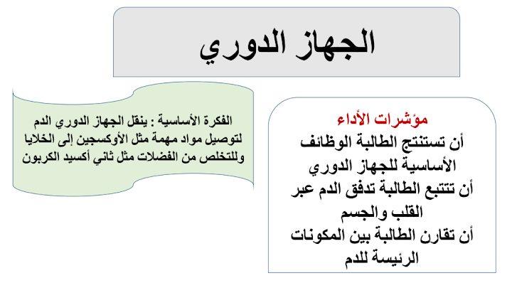 Photo of ملخص الجهاز الدوري علوم صف تاسع فصل ثاني