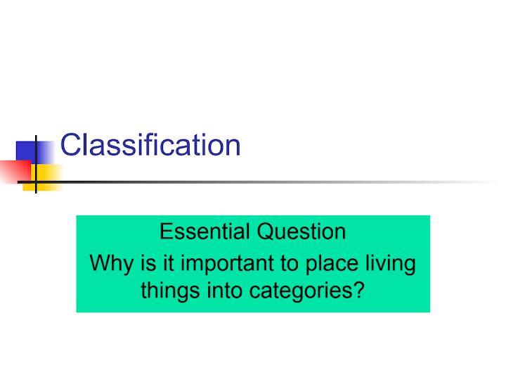 Photo of صف سادس فصل ثاني علوم درس تصنيف ممالك الكائنات الحية منهج إنجليزي