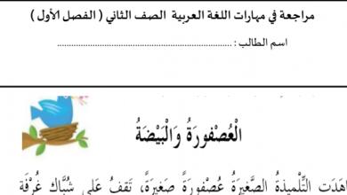 Photo of نص العصفور والبيضة تدريبات فهم واستيعاب لغة عربية صف ثاني فصل ثاني
