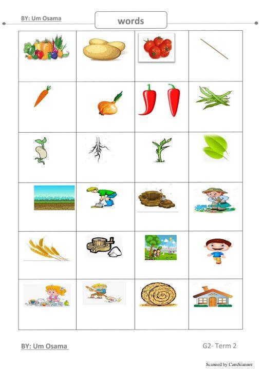 Photo of تدريب مفردات الفصل الثاني لغة إنجليزية صف ثاني