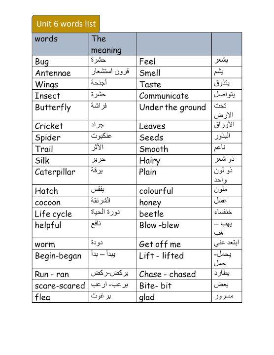 Photo of صف ثالث فصل ثاني مفردات الوحدة السادسة لغة إنجليزية