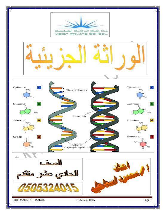 Photo of صف حادي عشر متقدم فصل ثاني مذكرة أحياء الوراثة الجزيئية