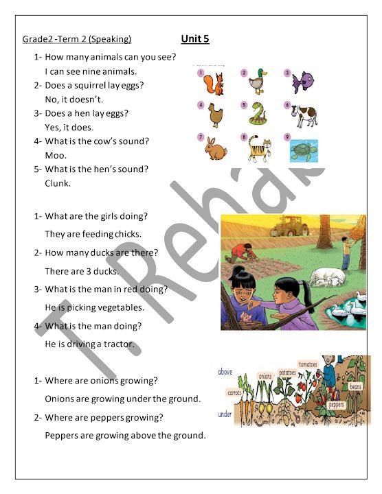 Photo of صف ثاني فصل ثاني اللغة الانجليزية تمرينات تحدث الوحدة الخامسة