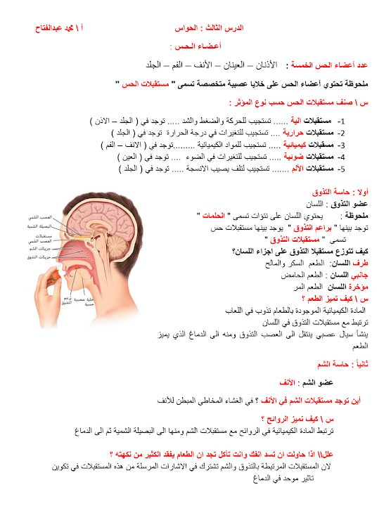Photo of ملخص الحواس أحياء صف ثاني عشر عام فصل أول