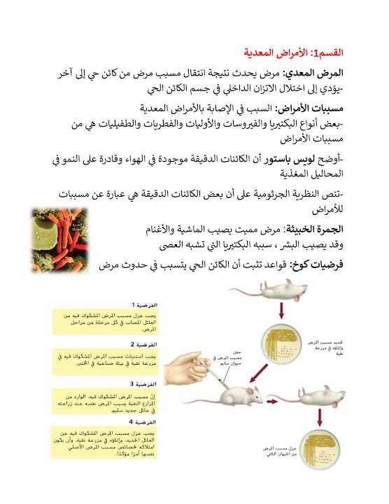 Photo of صف حادي عشر عام فصل ثاني ملخص أحياء درس الأمراض المعدية