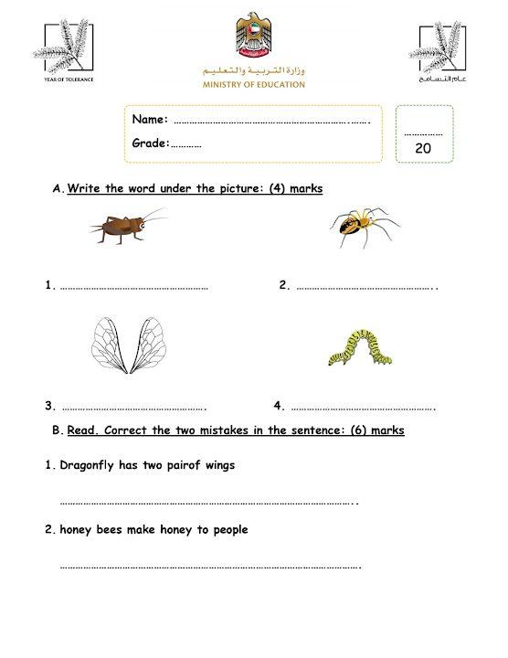 Photo of صف ثالث فصل ثاني نموذج اختبار الكتابة في مادة اللعة الإنجليزية الوحدة السادسة مع الحلول