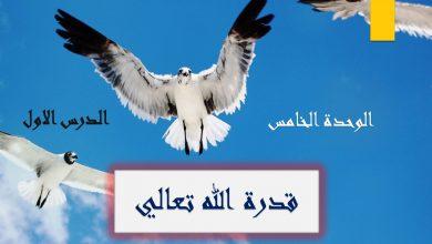 Photo of صور حل درس قدرة الله تعالى تربية إسلامية صف سادس فصل ثالث