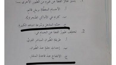 Photo of اجابة درس طائر القطا لمادة اللغة العربية الصف السابع