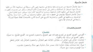 Photo of اجابة درس القول ما قالت حذام لمادة اللغة العربية الصف السابع