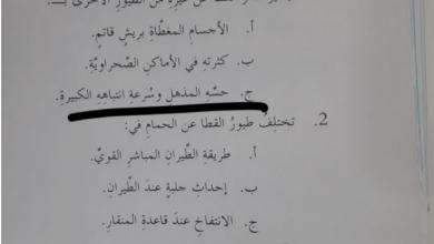 Photo of حل درس طائر القطا لغة عربية الصف السابع الفصل الثالث