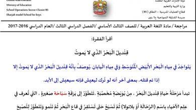 Photo of تدريبات تهيئة لامتحان الكتابة لغة عربية صف ثالث فصل ثالث