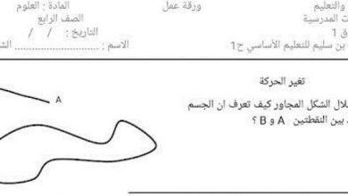 Photo of ورق عمل الوحدة العاشرة علوم صف رابع فصل ثالث