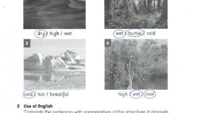 Photo of صف رابع فصل ثالث لغة إنجليزي حلول الوحدة 12