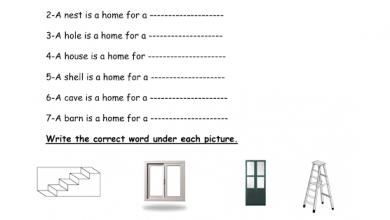 Photo of أوراق عمل الوحدة 8 لغة إنجليزية صف ثالث فصل ثالث
