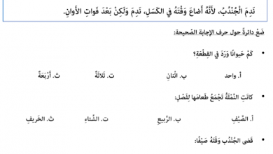 Photo of تدريبات مهارات القراءة قصة الجندب والنملة لغة عربية صف ثالث فصل ثالث