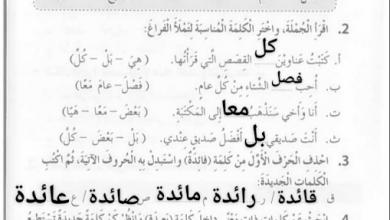 Photo of حل درسي الفصول الأربعة وجملة إن لغة عربية صف ثالث فصل ثالث