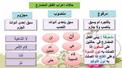 Photo of اجابة درس جزم الفعل المضارع لمادة اللغة العربية الصف السابع