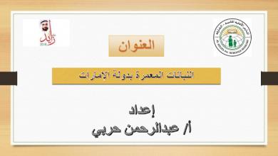 Photo of حل درس النباتات المعمرة اجتماعيات الفصل الثالث