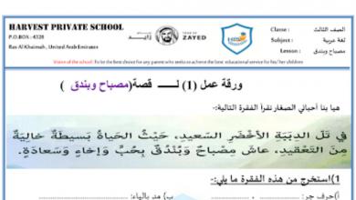 Photo of ورقة عمل درس مصباح وبندق محلول لغة عربية صف ثالث فصل ثاني