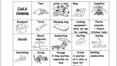 Photo of مفردات الوحدة السادسة لغة إنجليزية صف خامس فصل ثاني