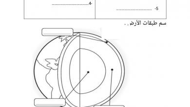 Photo of ورقة عمل علوم صف ثالث فصل ثاني