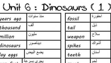Photo of مفردات وتمارين الوحدة السادسة الديناصورات لغة إنجليزية صف رابع فصل ثاني