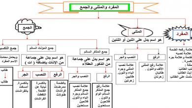 Photo of صف سادس فصل ثاني لغة عربية درس اعراب المثنى وجمع المذكر السالم
