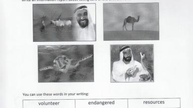 Photo of صف سابع فصل ثاني لغة إنجليزية ورق عمل