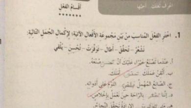 Photo of صف رابع فصل ثاني لغة عربية حلول كتاب النشاط