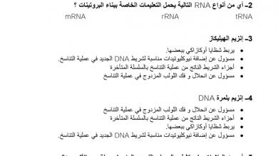 Photo of صف ثاني عشر متقدم أحياء فصل ثاني مراجعة علم الوراثة الجزيئية