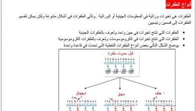 Photo of صف ثاني عشر فصل ثاني أحياء  ملخص الطفرات و الجينات