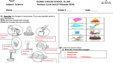 Photo of صف خامس فصل ثاني علوم  مراجعة ثانية  منهج إنجليزي