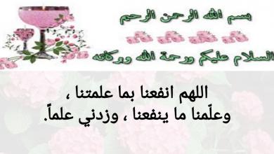 Photo of حل درس الرفق خير تربية إسلامية صف خامس فصل ثاني