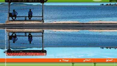 Photo of دليل المعلم التحويلات الهندسية والتناظر رياضيات صف عاشر متقدم فصل ثاني
