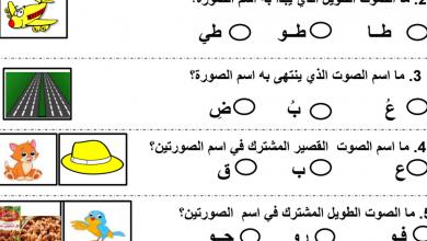 Photo of تقويم لغة عربية صف أول فصل ثاني