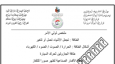 Photo of صف أول فصل ثاني علوم ورق عمل الوحدة العاشرة
