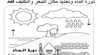 Photo of صف أول فصل ثاني علوم ورق عمل الطقس