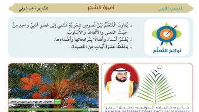 Photo of صف سابع فصل ثاني لغة عربية أميرة الشجر