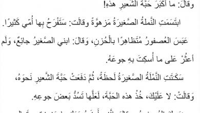 Photo of صف ثالث فصل ثاني لغة عربية قصة النملة والعصفور مهارات القراءة