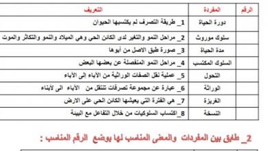 Photo of صف رابع فصل أول علوم أوراق عمل وتدريبات