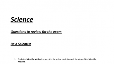 Photo of صف ثالث فصل أول علوم أوراق مراجعة منهج إنجليزي